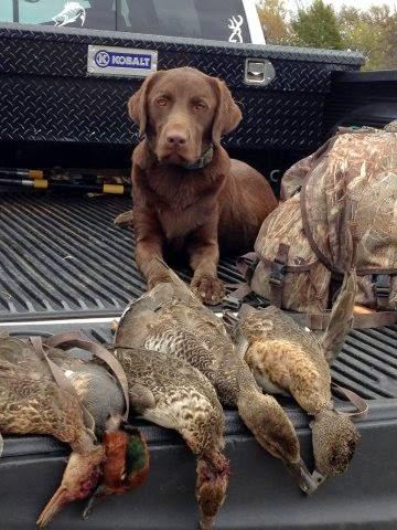 north texas duck hunting