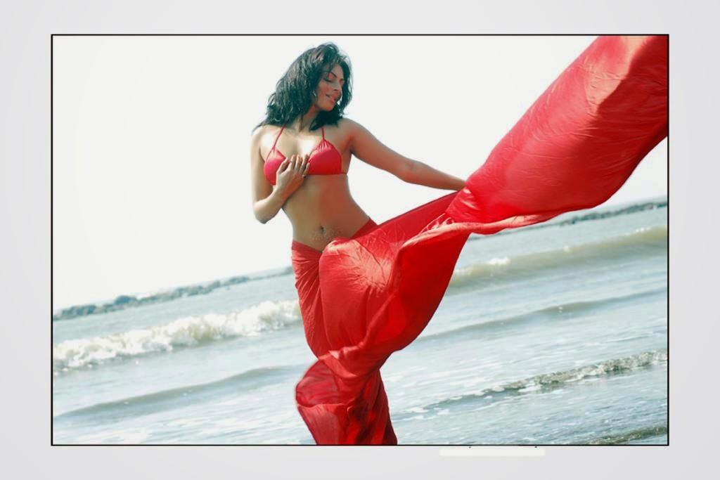 NEERU BAJWA IN RED SAREE REMOVING HER BLOUSE UNSEEN HOT SCENES PICS SEX SCENES OF NEERU BAJWA