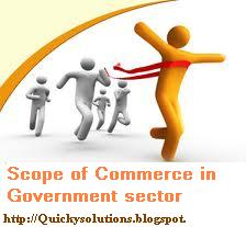 jobs after puc in commerce, jobs for commerce background, scope of comerce in govt. sector,