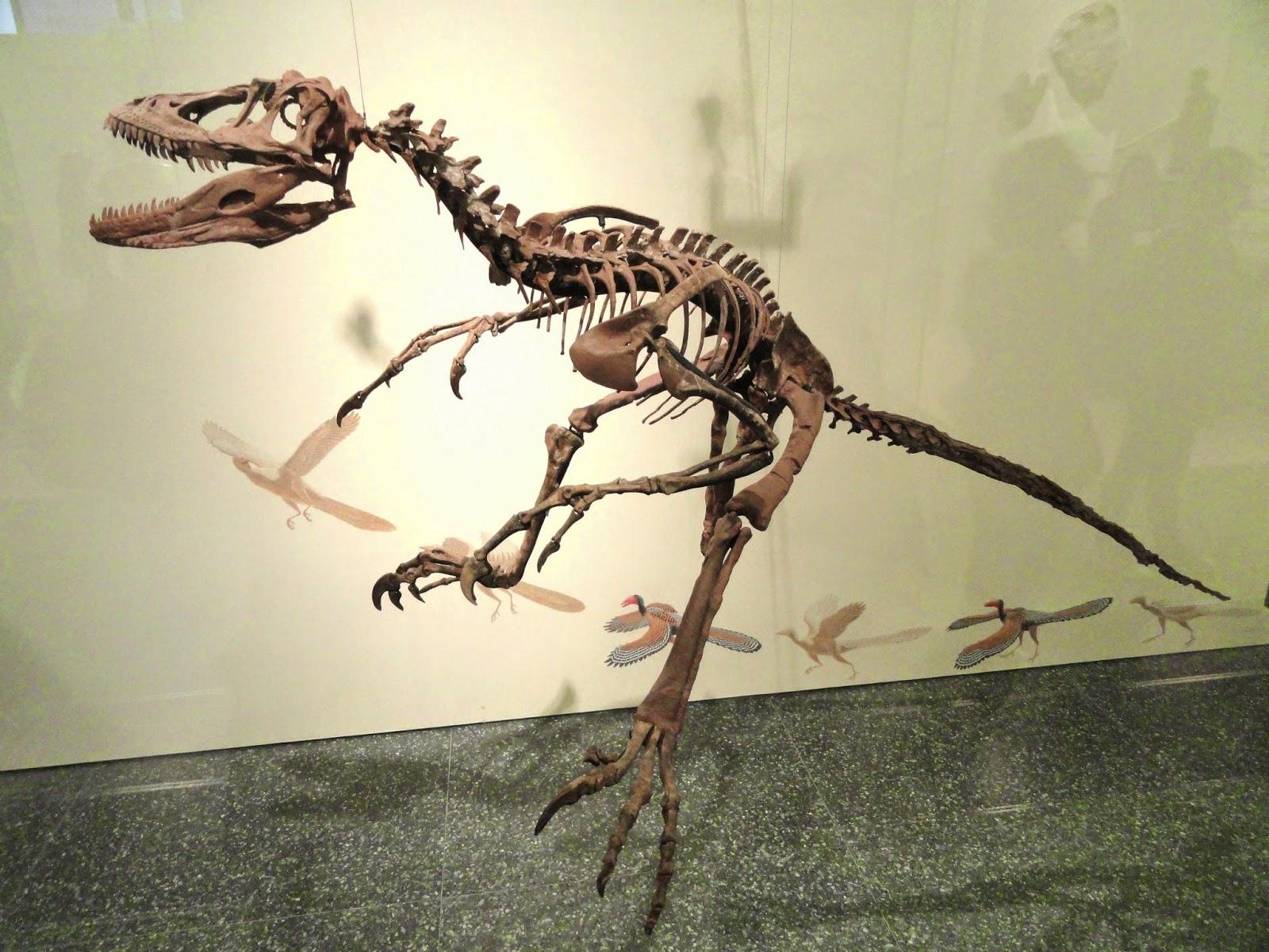 prehistoric beast of the week deinonychus beast of the week