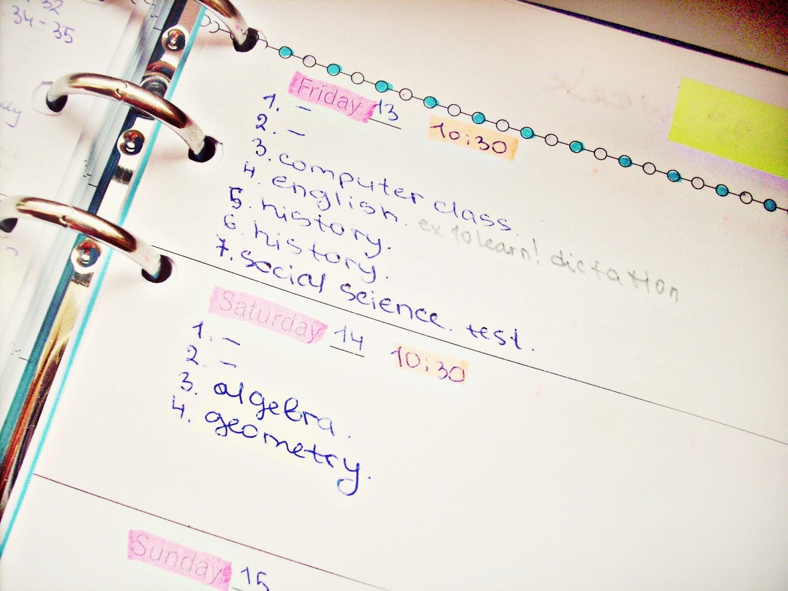 Alina Ermilova 8 Tips How To Organize Your School Agenda – School Agenda
