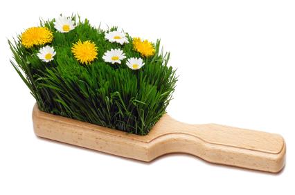 Dustpan brush with Spring flowers in bristles