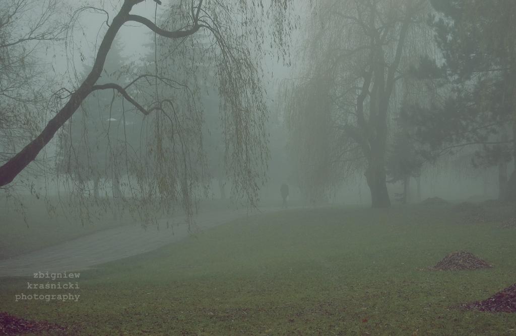Mgła w wielkim mieście