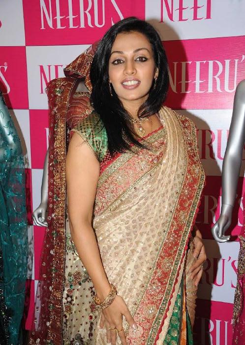 asha saini aka mayuri in silk saree cute stills