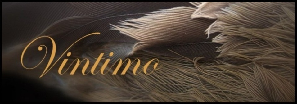 Vintimo Fine Art and Photography