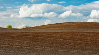 cara berinvestasi tanah, jenis tanah investasi, investasi tanah menguntungkan, cara investasi tanah