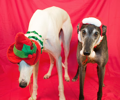 Blue and Bettina wish you Happy Holidays!