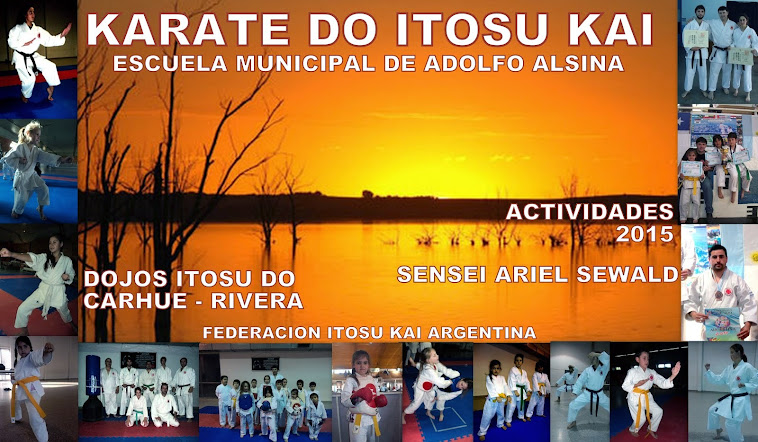 karate actividades 20015
