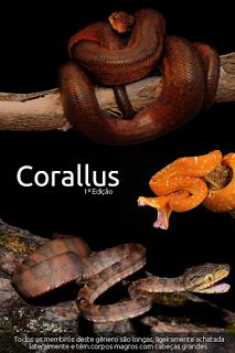 E BOOK Corallus 1ªEdição