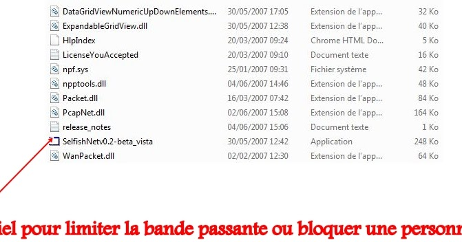 selfishnet download windows 10