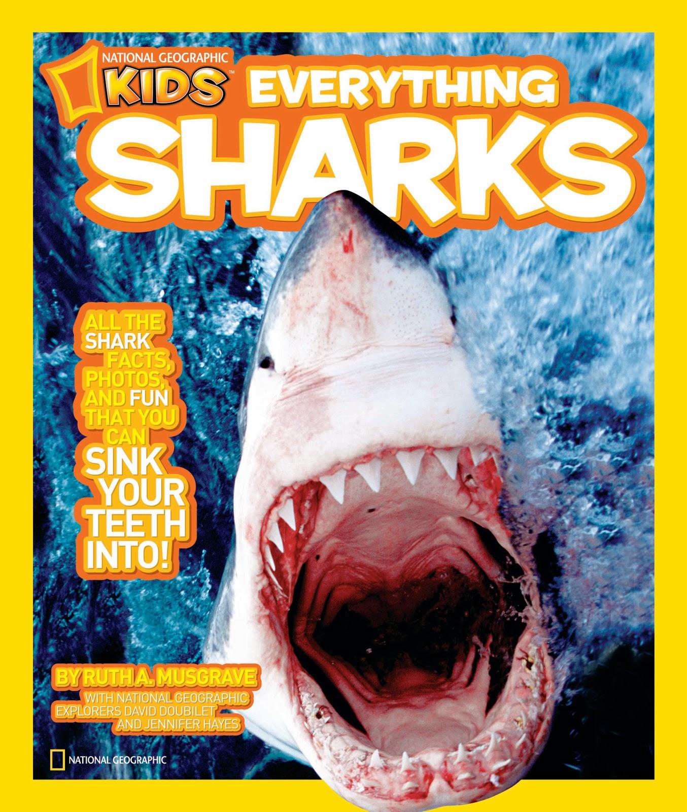 http://4.bp.blogspot.com/-lAQvrMjdScQ/TWAY0mOwxbI/AAAAAAAAA2M/8TTAgbRkERc/s1600/musgroveNGK+Everything+Sharks+Cover.jpg