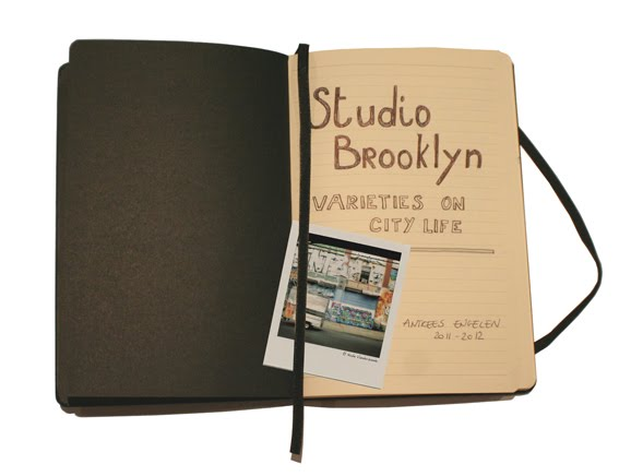 Studio Brooklyn: Varieties on City Life