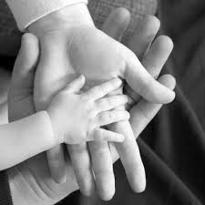 Jasa Ibubapa Kita