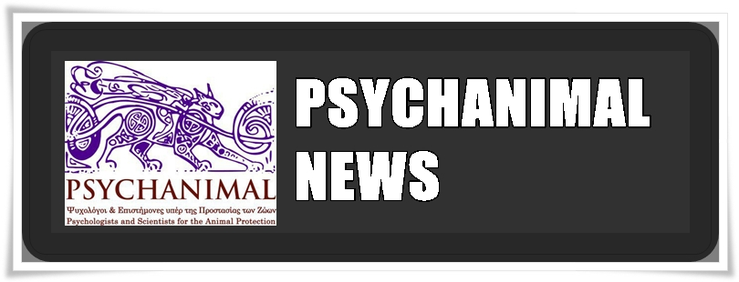 Psychanimal News Blog