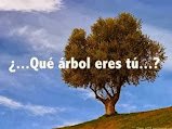 ¿ Qué árbol eres tú ?