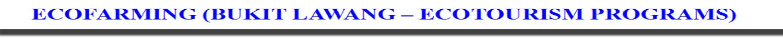 ECOFARMING BUKIT LAWANG