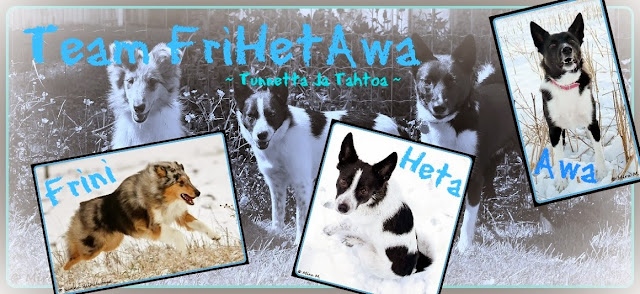 Team FriHetAwa - Tunnetta ja tahtoa