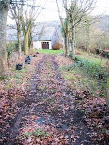 jardin abandonné depuis des années à Fierville