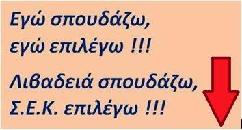 Σ.Ε.Κ ΛΙΒΑΔΕΙΑΣ