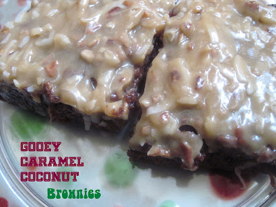 WW Weight Watchers Brownies