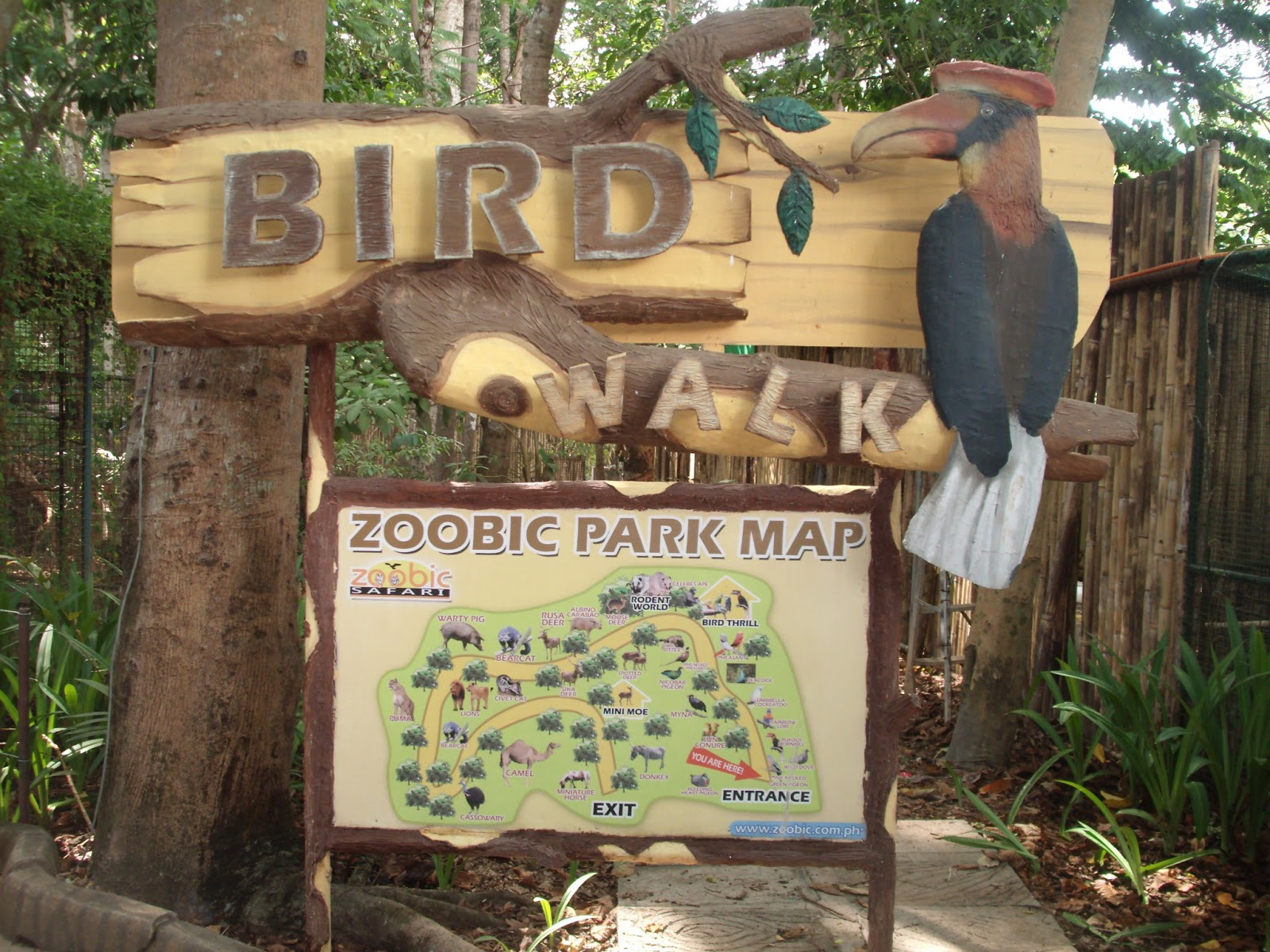 They have tons of animals in there rangingfrom birds, monkeys, cats of