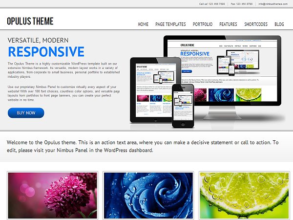 Opulus theme - free customize theme