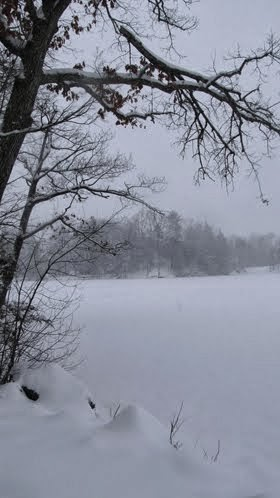 Puffer's Pond in Snow
