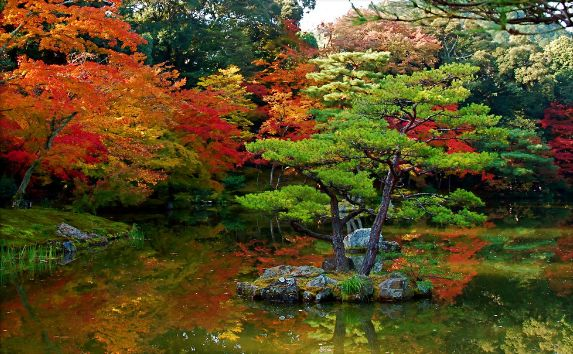 Home garden design for Traditional japanese garden
