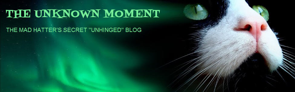 CLICK IMAGE TO VIEW MY BLOG ''THE UNKNOWN MOMENT''