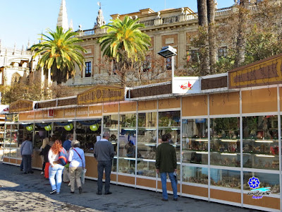 Sevilla - Feria del Belén 2015 - Entorno