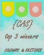 CAS Colours & Sketches