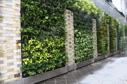 green trees in the walls | Vietnam Outdoor Furniture