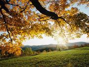 OCTUBRE: PAISAJES DE OTOÑO autumn leaves
