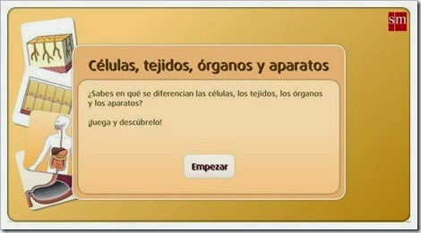 http://www.primaria.librosvivos.net/archivosCMS/3/3/16/usuarios/103294/9/5EP_Cono_ud1_184/frame_prim.swf