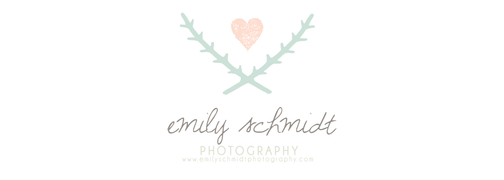 Emily Schmidt Photography