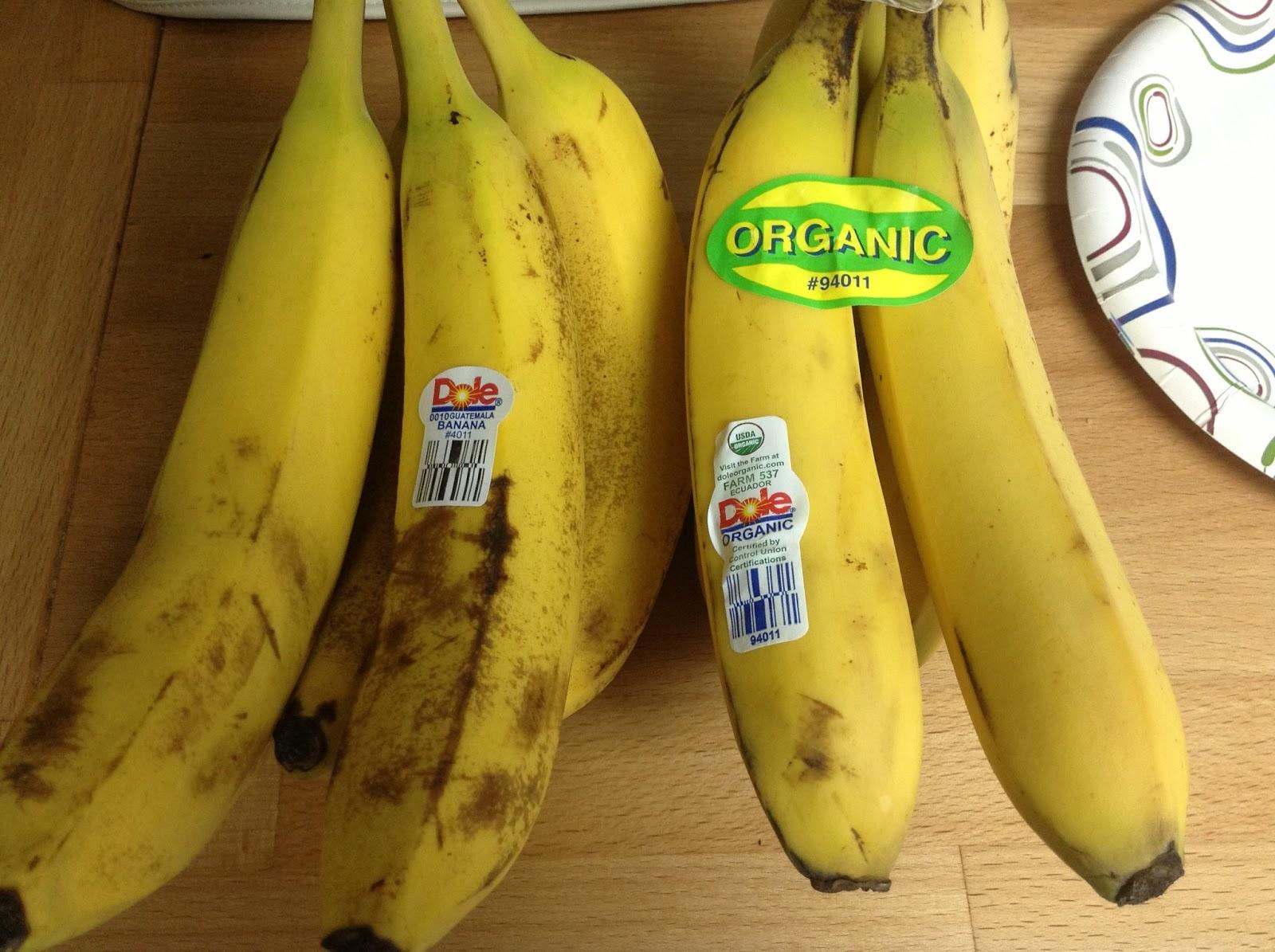 organic foods vs non organic foods essay