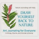Draw Yourself Back to Nature E-Course