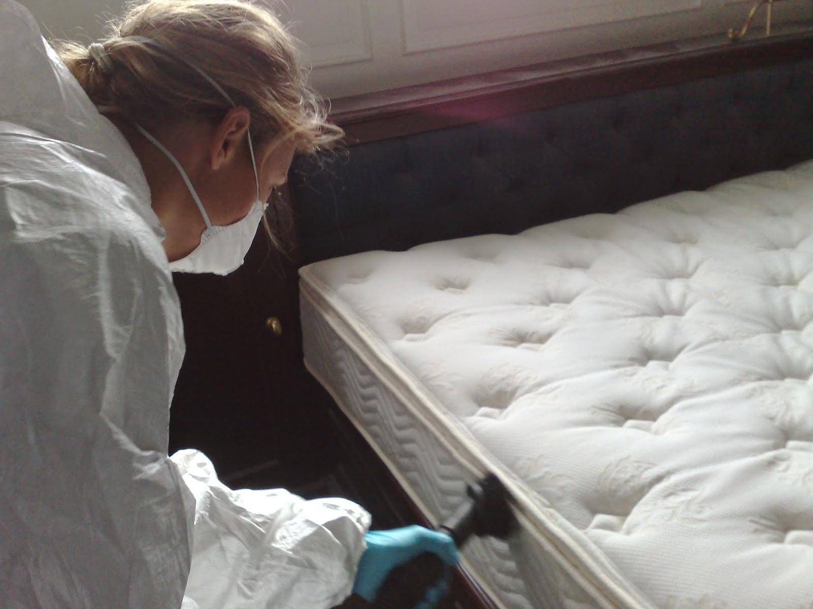 Descanso y salud higiene de los colchones - Acaros del colchon ...