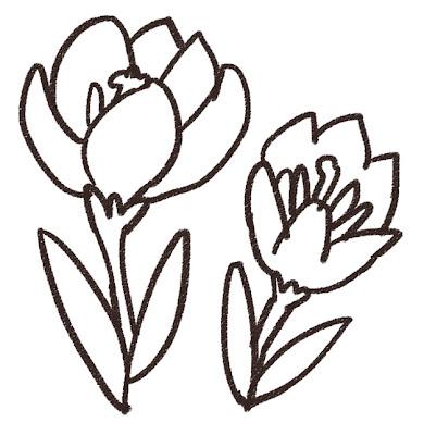 クロッカスのイラスト(花) モノクロ線画