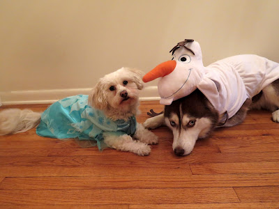 I think Elsa & her buddy Olaf make a great team!