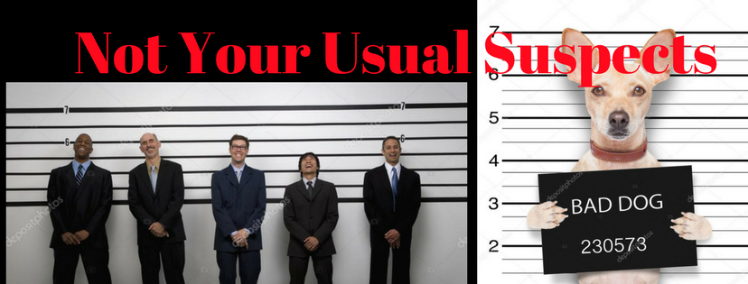 Not Your Usual Suspects