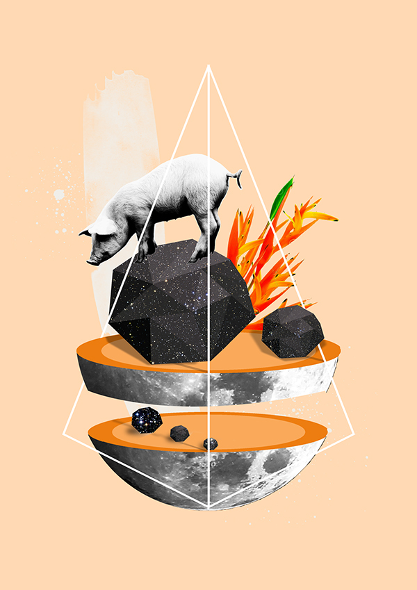 Pig in space ©Liam Madden | Digital Collage