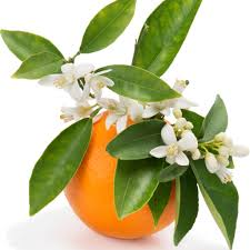 Healing fragrance