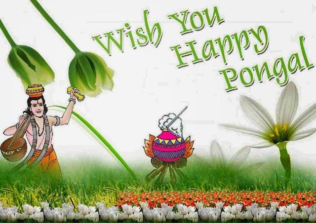http://burnsnight2016.blogspot.in/2016/01/makar-sankranti-celebration-in-gujrat.html