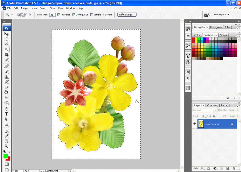 Klik Select > Inverse, supaya yang terseleksi adalah gambar bunganya ...