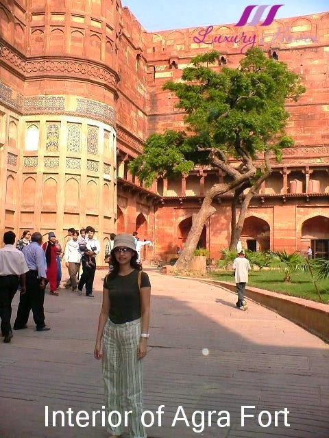 luxury haven lifestyle blog reviews india agra fort