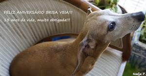 Brisa...