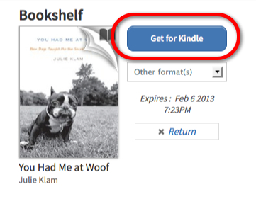how to get a book published on kindle