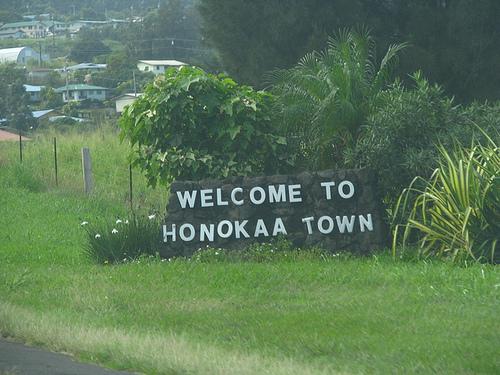 Aloha Rental Car Discount Code