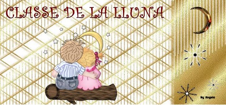 CLASSE DE LA LLUNA